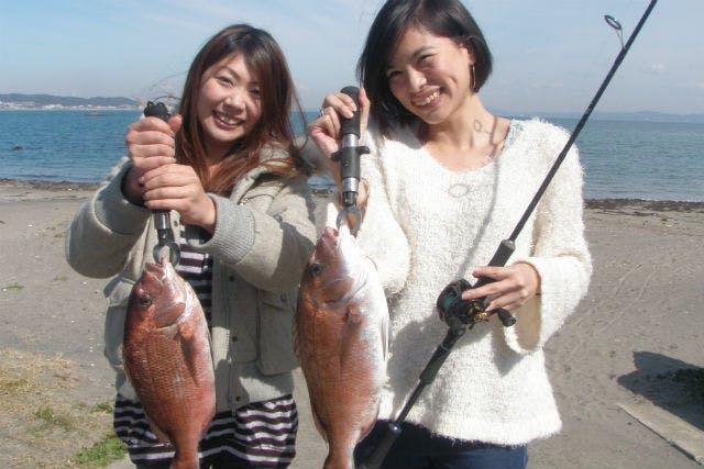 三浦海岸 ランチ