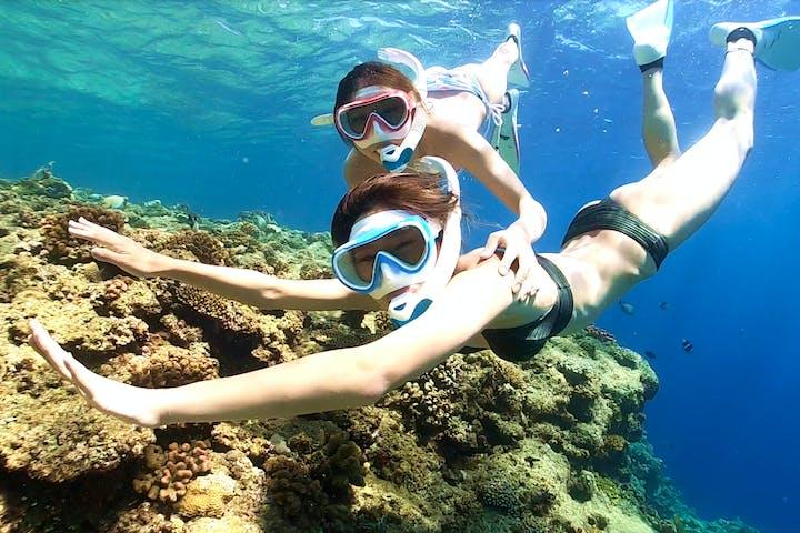 西海岸 素潜り・スキンダイビングの遊び体験|日本最大の体験・遊び ...