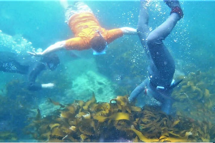 三重・志摩・漁業】伊勢志摩の海で素潜り漁に挑戦!海女さんと一緒に ...