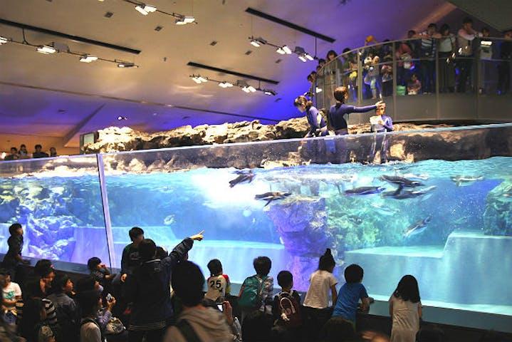 スカイ ツリー 水族館