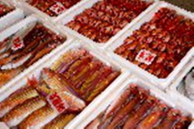 高知・須崎・南国の漁業・魚市場