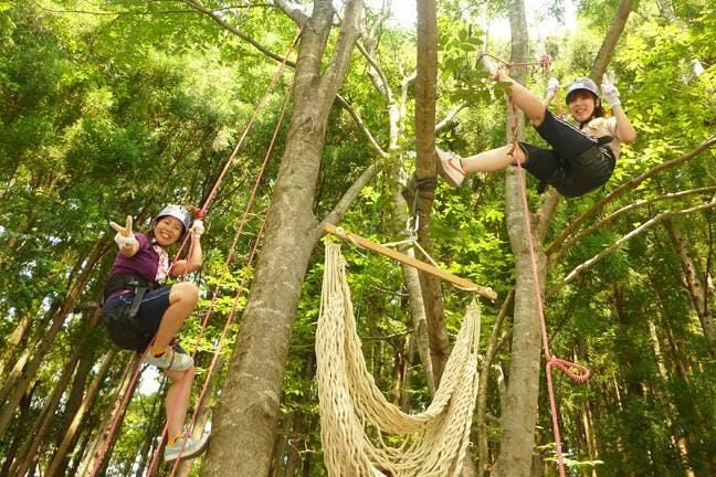 湖西のツリークライミング・木登り