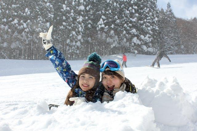 新潟県のスキー場 その他