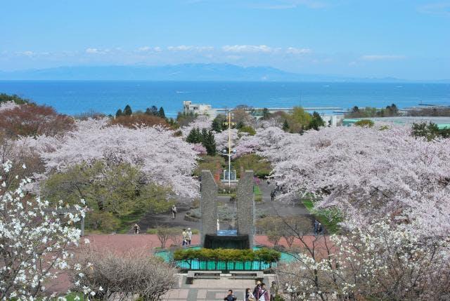 春のオニウシ公園