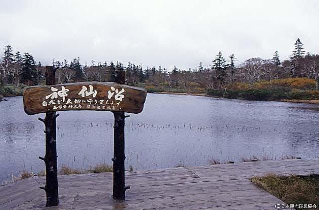 ニセコ連山の沼