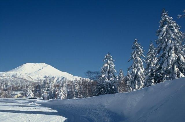 旭岳温泉 冬