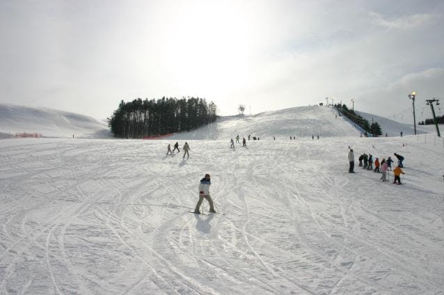 興部町営スキー場