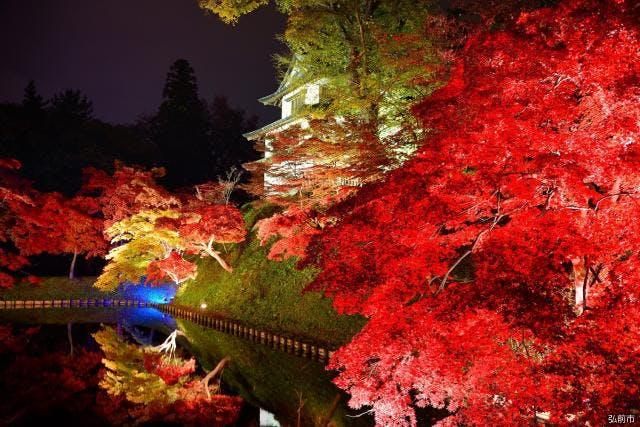 菊と紅葉まつり