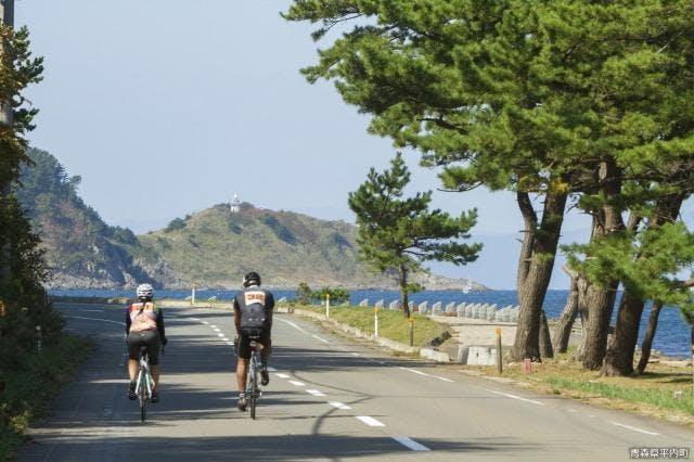椿山〜大島間