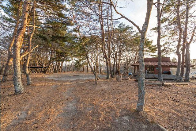 七ヶ浜町生涯学習センター キャンプ場