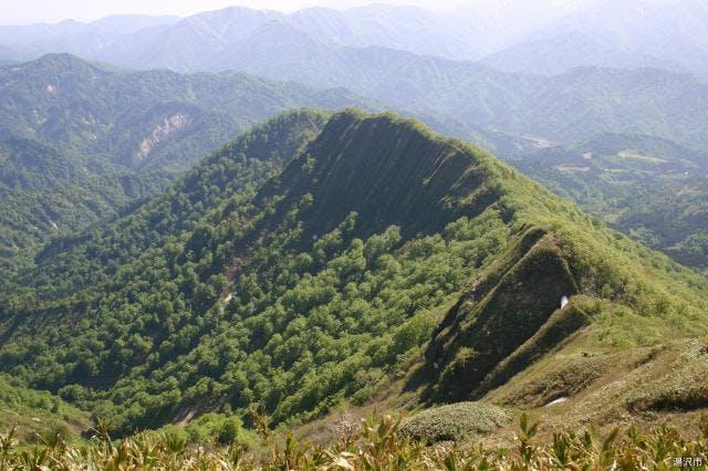 山伏岳びょうぶ尾根