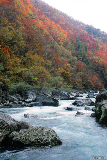 秋の抱返り渓谷