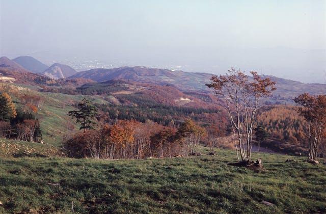 西蔵王高原