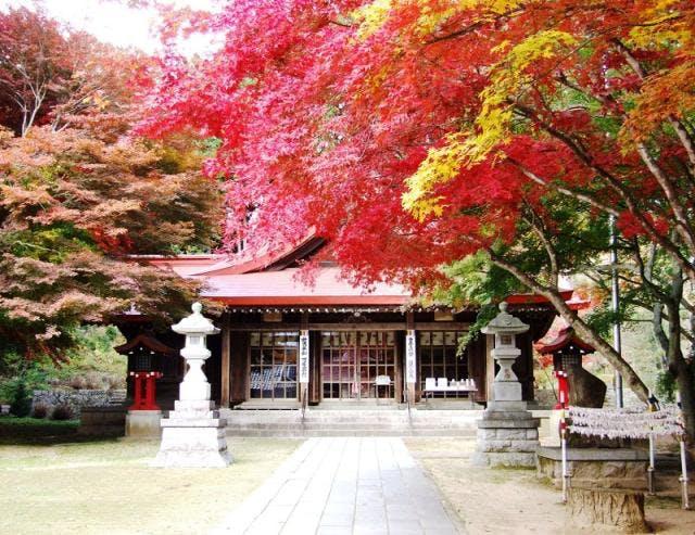 霊山神社 秋