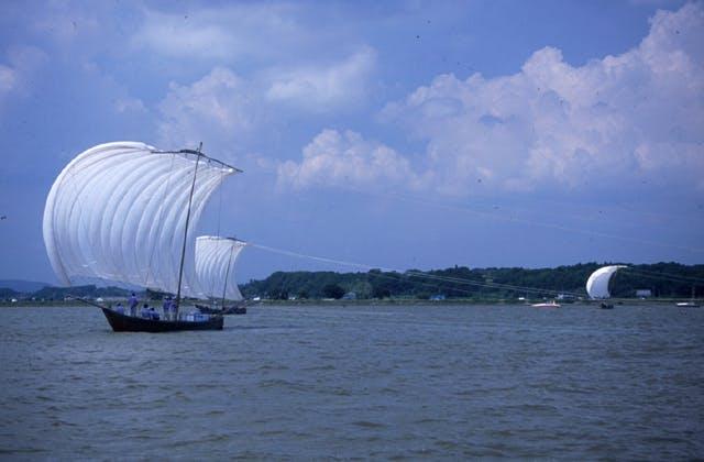 霞ヶ浦の帆曳網漁