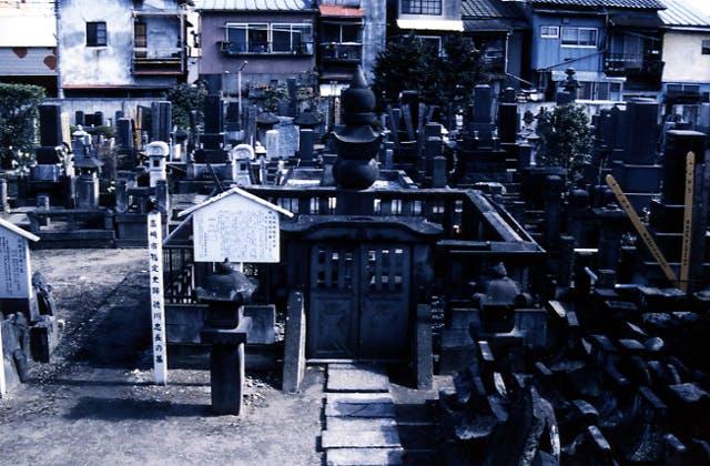 徳川忠長の墓