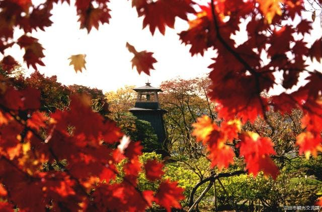 沼田公園の紅葉(鐘楼)