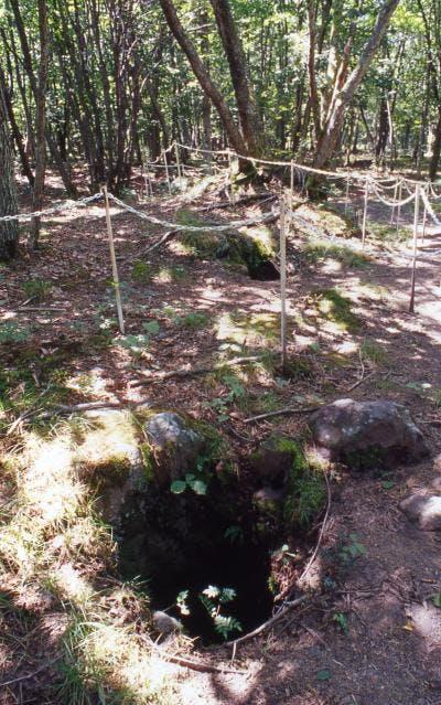 浅間山溶岩樹型群