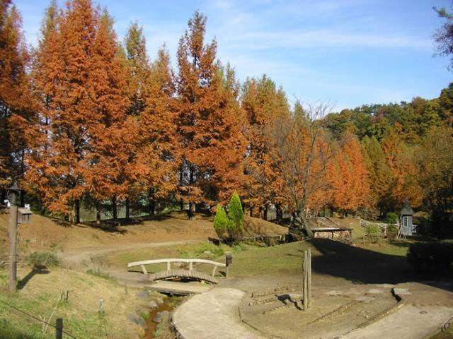 秋のあけぼの子どもの森公園