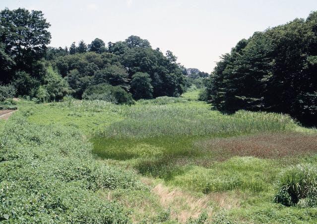 高尾宮岡ふるさとの緑の景観地