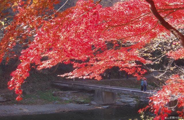 嵐山渓谷(塩沢冠水橋付近の紅葉)