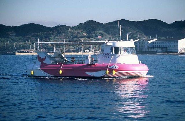 水中観光船たてやま号