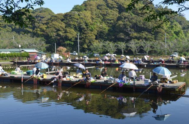 春のヘラブナ釣り大会