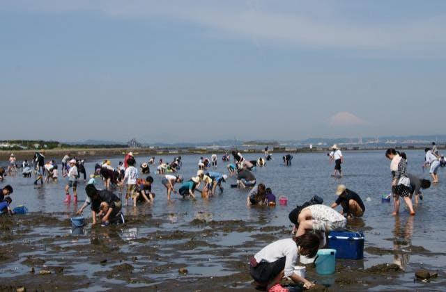潮干狩り場と富津岬