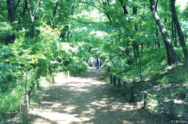 都立浅間山公園