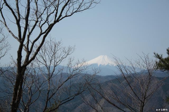 馬頭刈山から望む富士