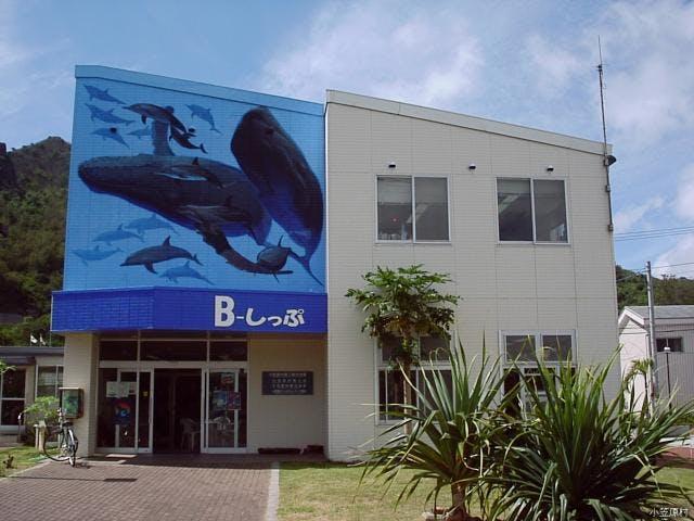 B-しっぷ(商工観光会館)