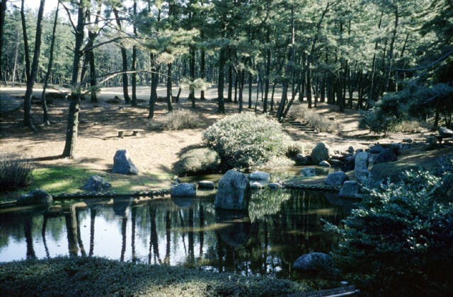 三国町海浜自然公園