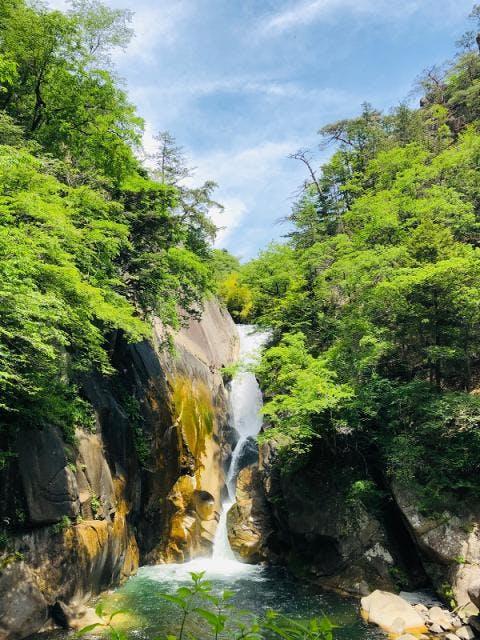新緑の仙娥滝