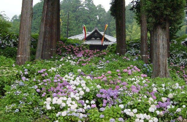 徳栄山妙法寺