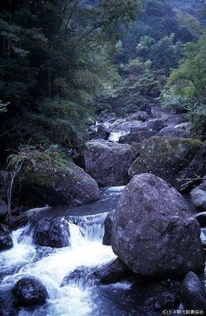 大柳川渓谷