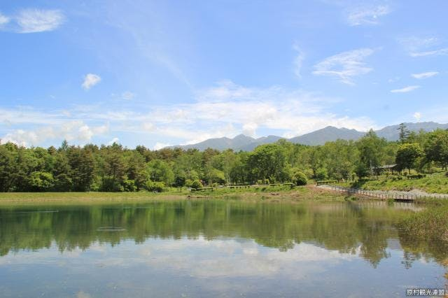 まるやち湖と八ヶ岳