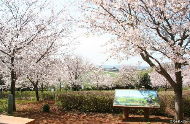 正法寺古墳公園