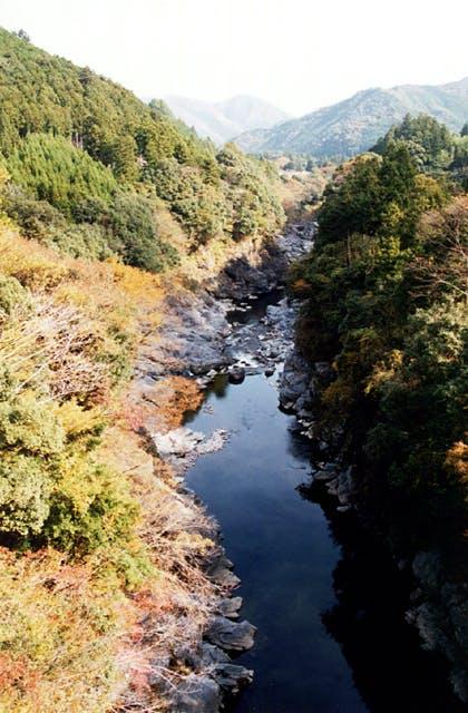 領内峡の紅葉
