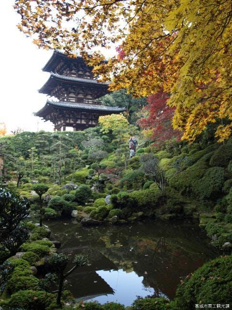 當麻寺西南院庭園