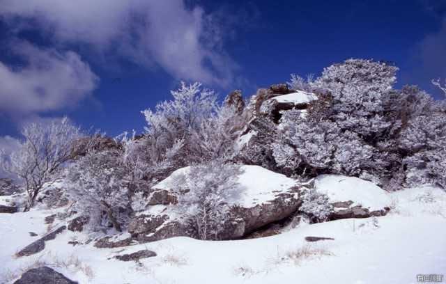 笠岩の雪化粧