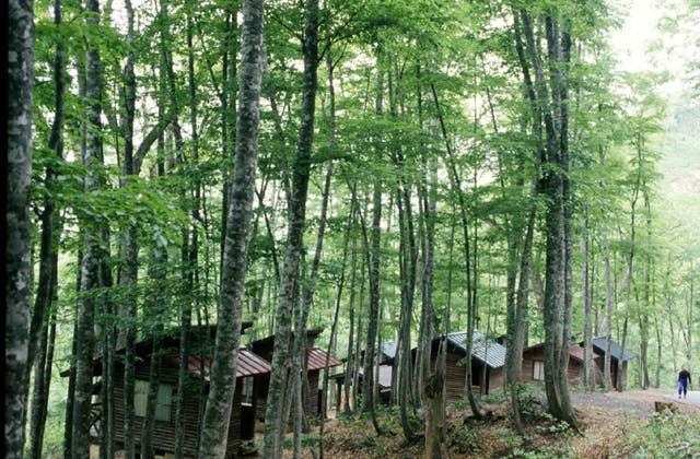 八東町ふる里の森