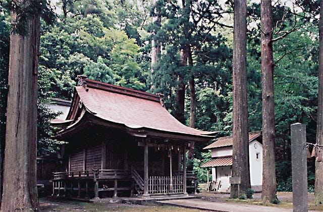 ムシ井神社