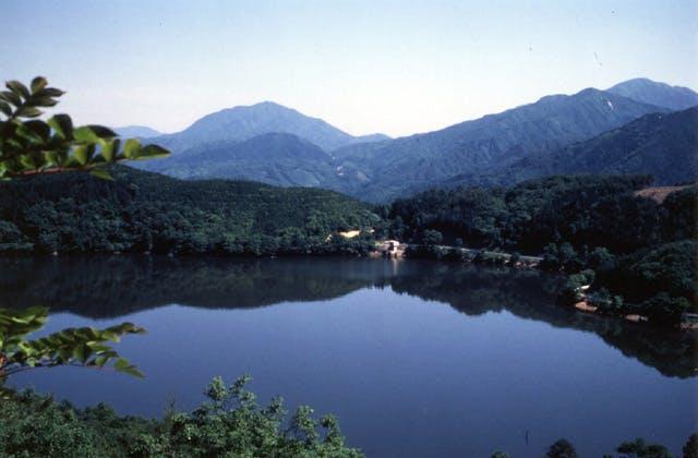 鵜の池公園