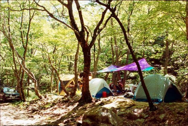 いこいの森キャンプ場