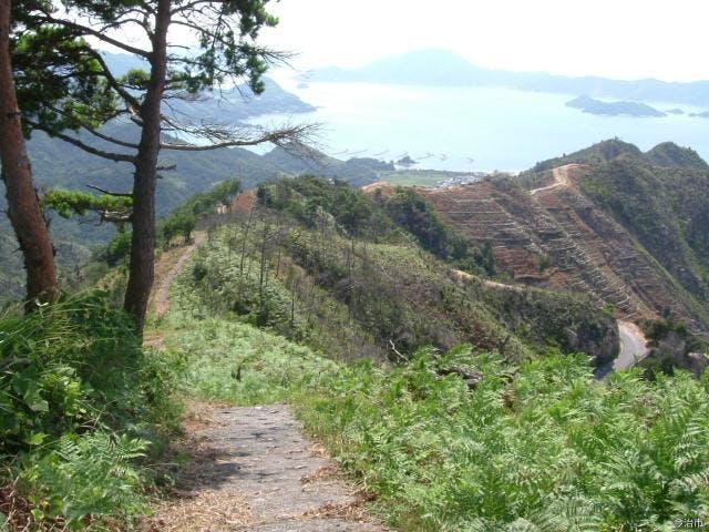 鷲ヶ頭山自然研究路
