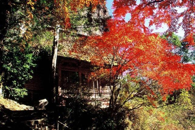 秋の岩屋神社本殿(国重文)