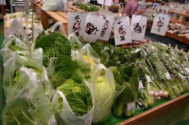 新鮮野菜が豊富です