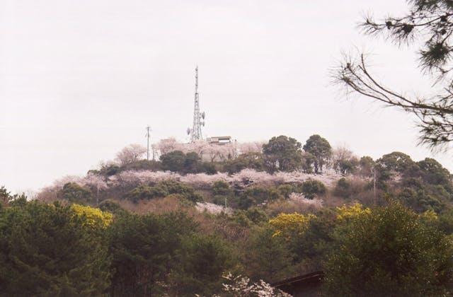 日の隈山展望台