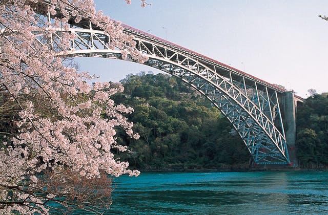 西海橋のツツジ,桜