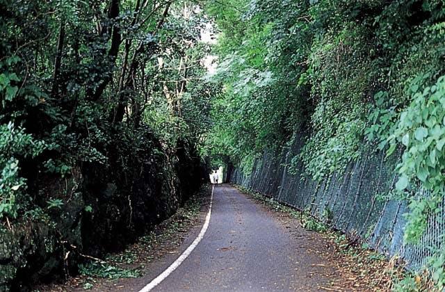旧小浜鉄道跡